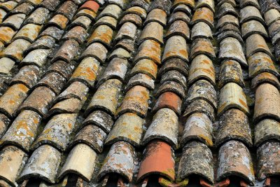Exterior of Your Roof